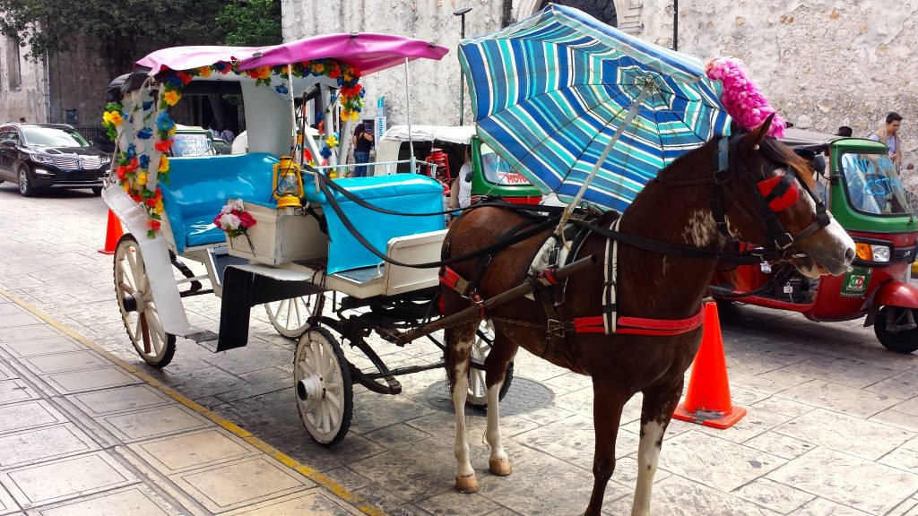 horse & carriage ride through Merida