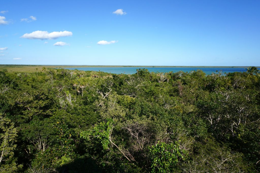 Birds-eye view of Sian Ka'an Biosphere Reserve and Muyil Lagoon near Tulum Mexico.