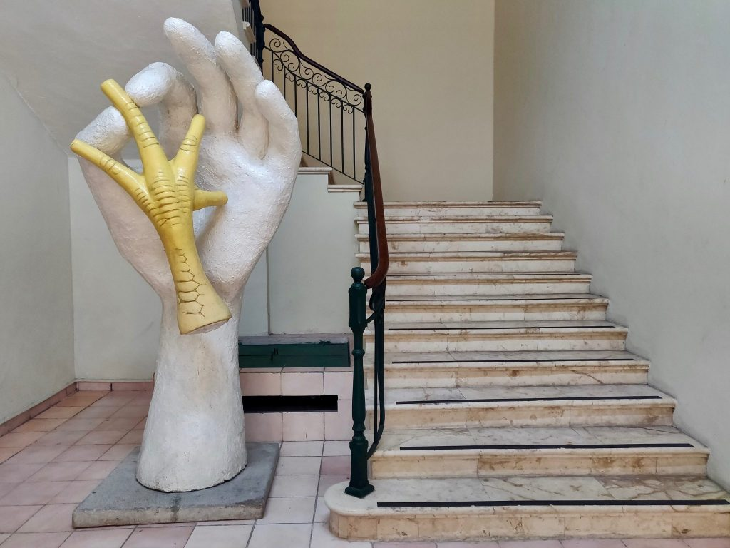 Museo Fernando García Ponce-Macay art museum in Merida Mexico