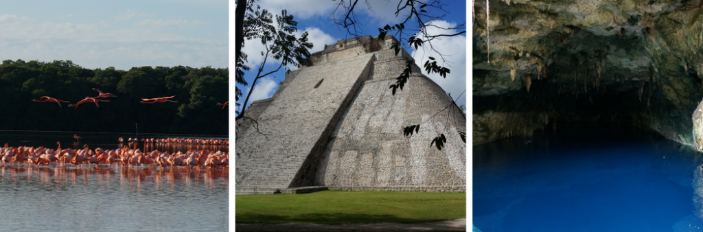 three day trips from Merida: Flamingos of Celestun, chichen itza ruins, blue cenote