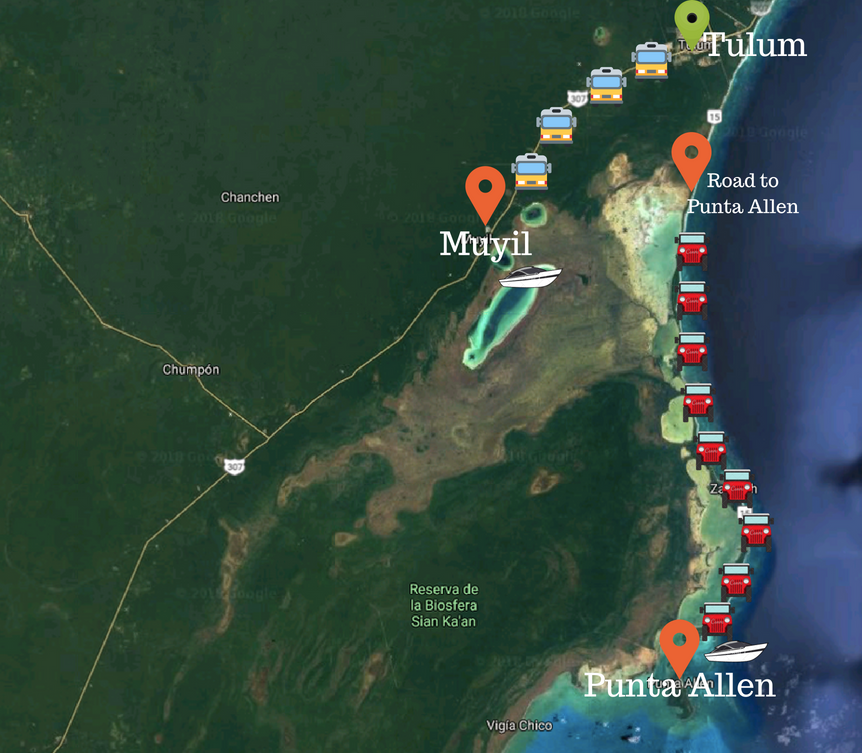 Map of Sian Ka'an Access Points from Tulum: Muyil and Punta Allen Source: Google Maps