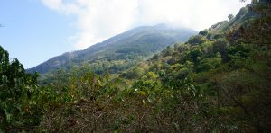 Volcan San Pedro from trailhead