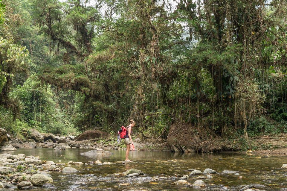 River crossing during ciudad perdida hike Colombia