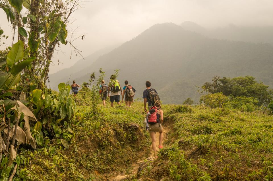 The trail on hike to ciudad perdida Colombia