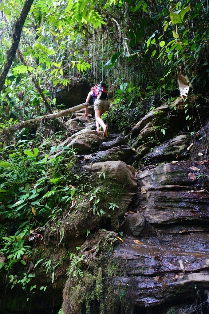 Ciudad Perdida trail climb