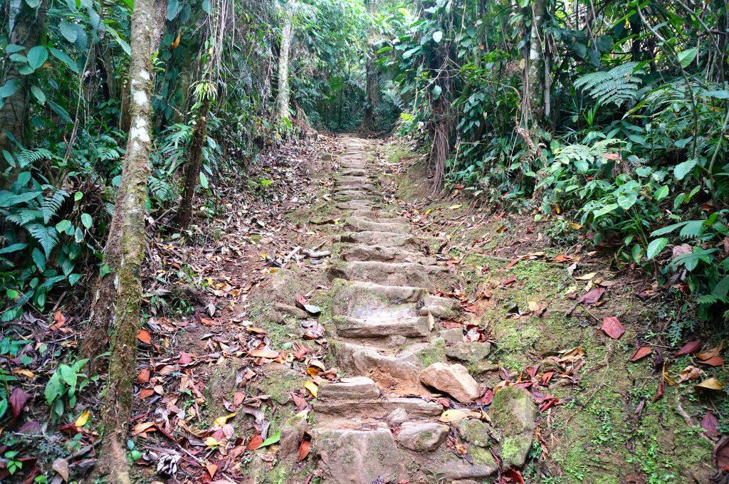 Ciudad perdida steps