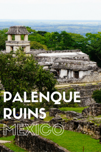 20 Photos That Will Make You Want to Explore the Palenque Ruins of Mexico! Find out what makes this UNESCO site so spectacular and get helpful cost & transportation info!