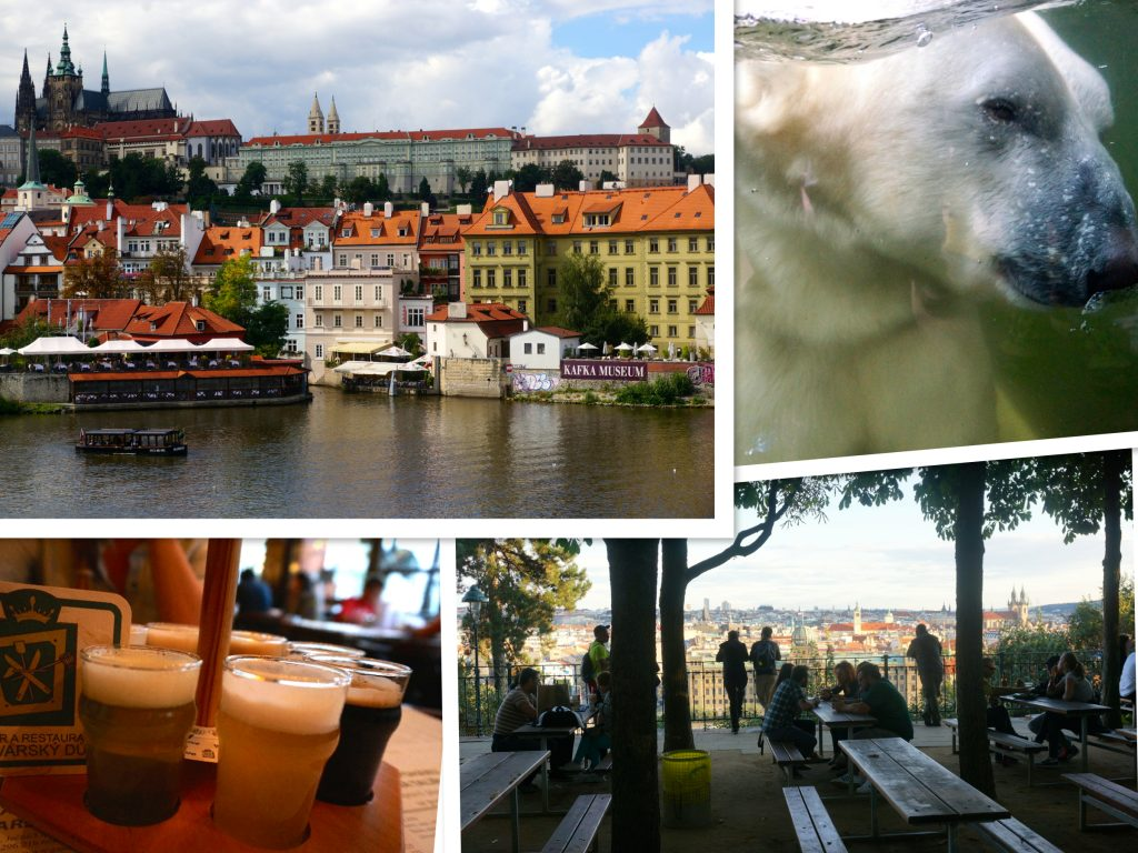 Old town, Prague Zoo, beer garden