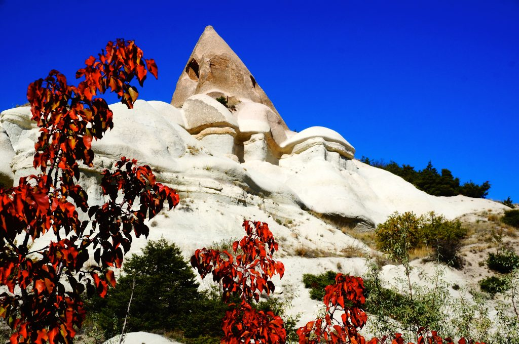 Fall foliage in Cappadocia