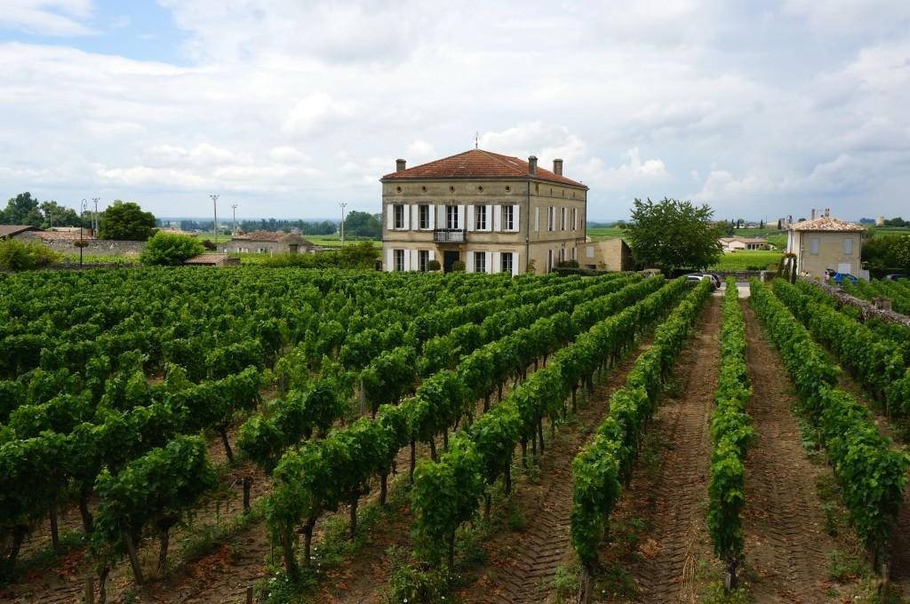 St Emilion winery