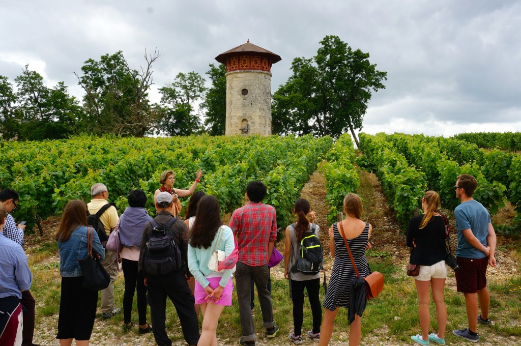 people touring vineyards in the Medoc wine region of France
