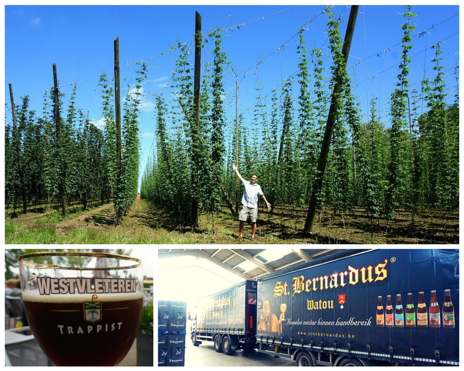 Breweries of Belgium