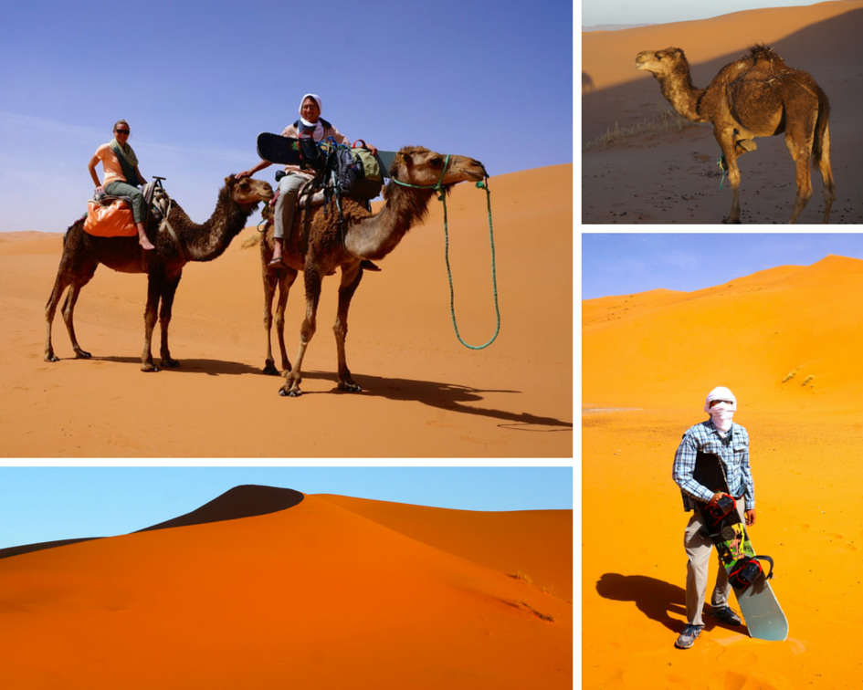 Camel Trekking through the Sahara Desert