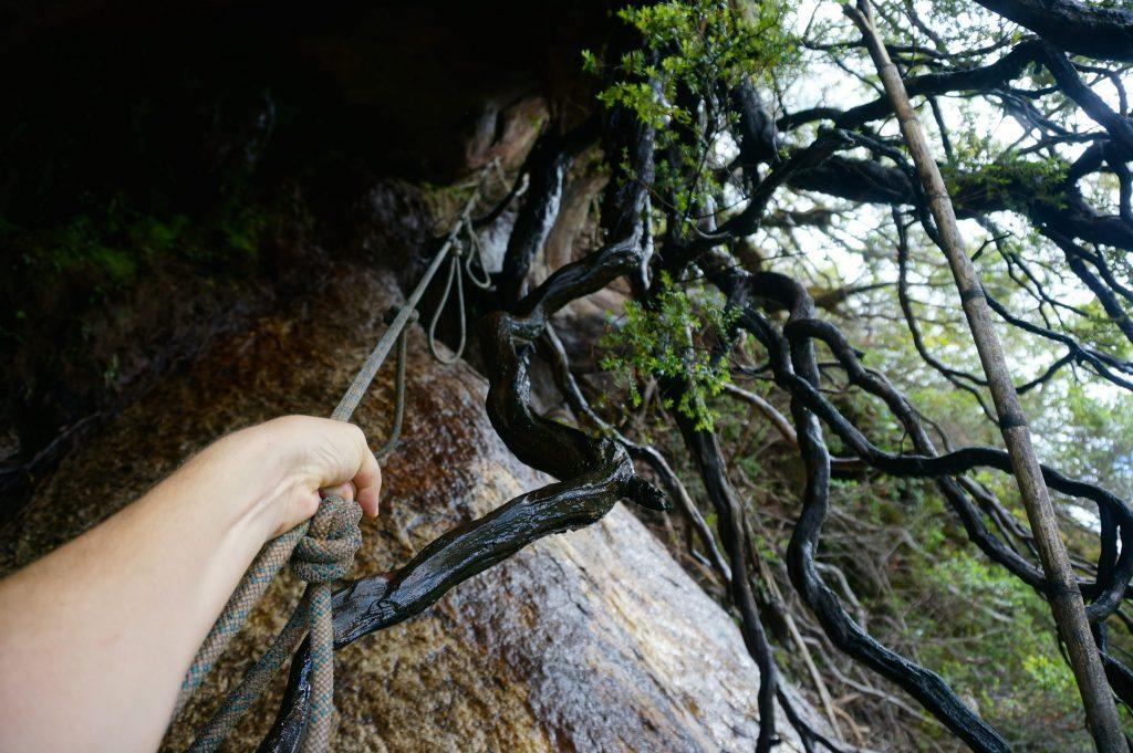 Arco Iris roots climb