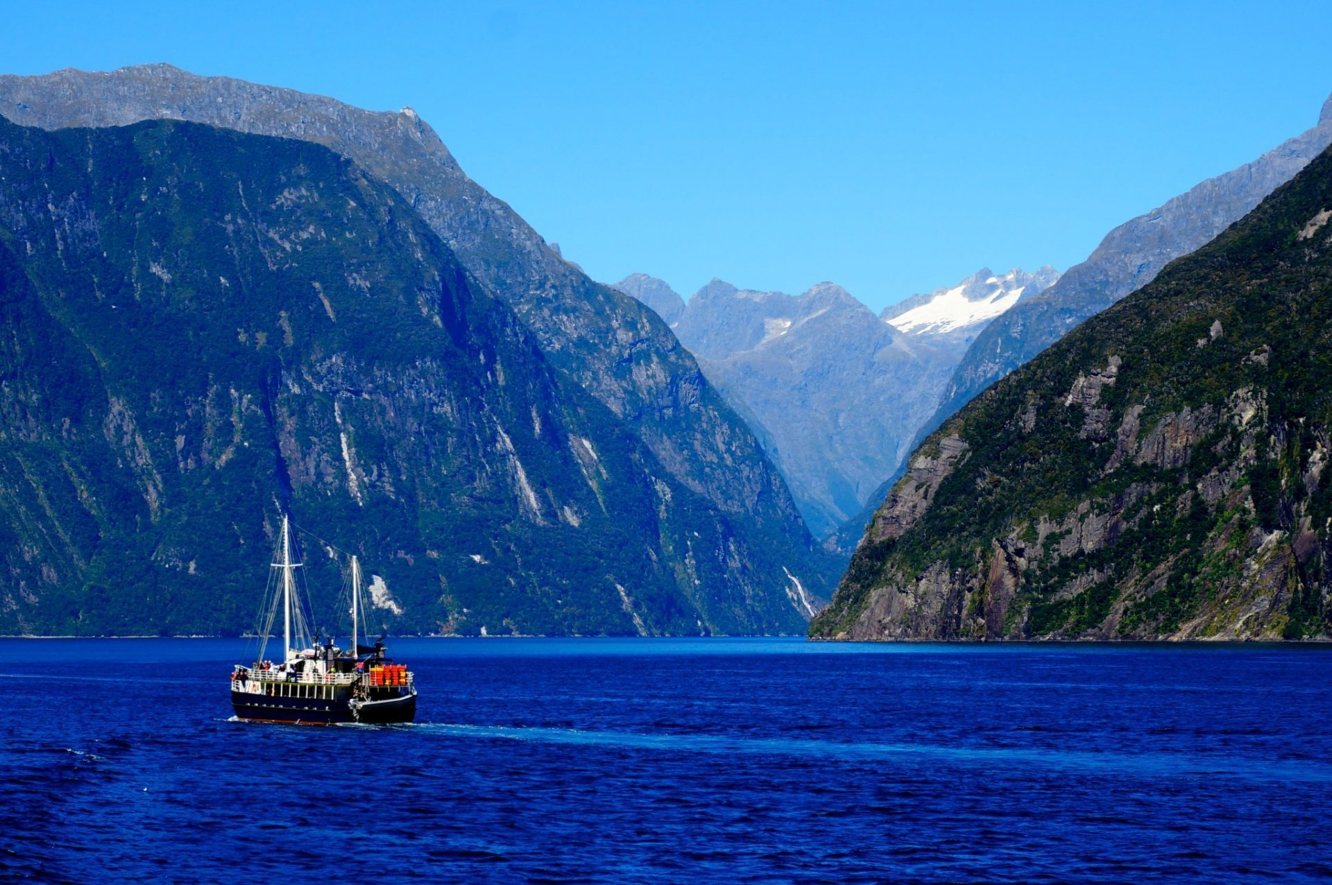 Is Milford Sound Worth It Tips Everything You Need To Know To Decide - Milford cruise in car show