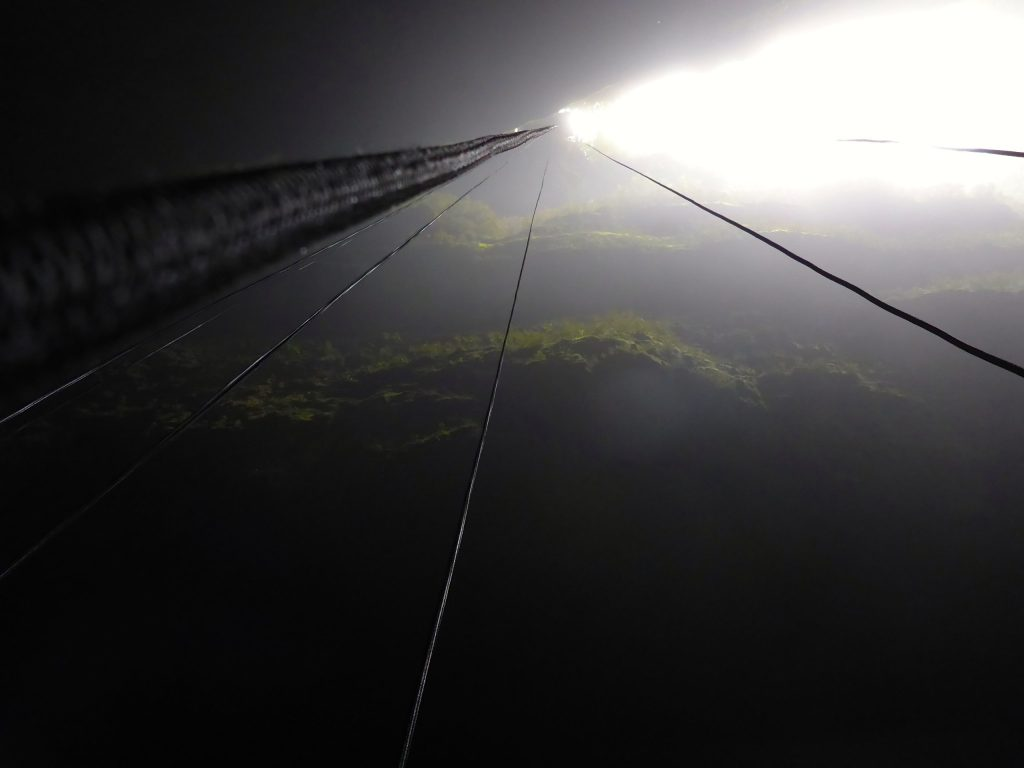 Ropes dangle from high above down into the Lost World cave