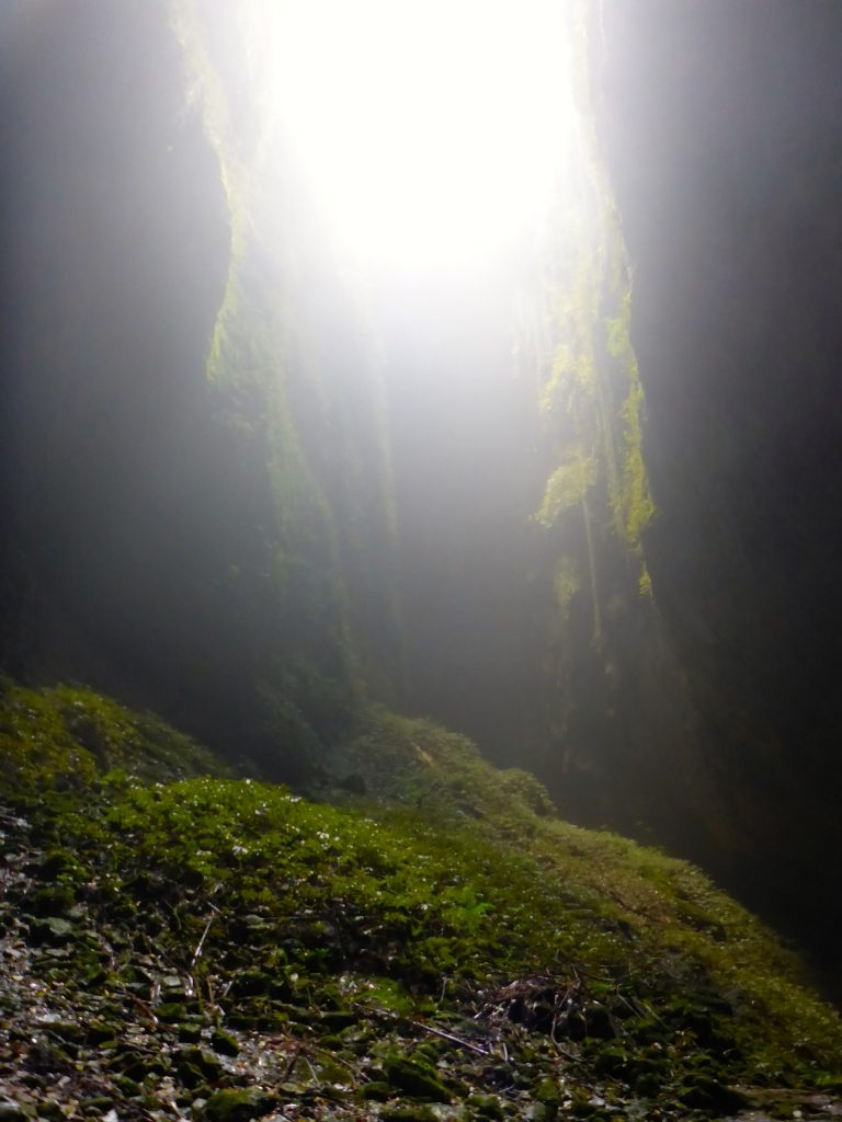 sunlight shines into the lost world cave opening