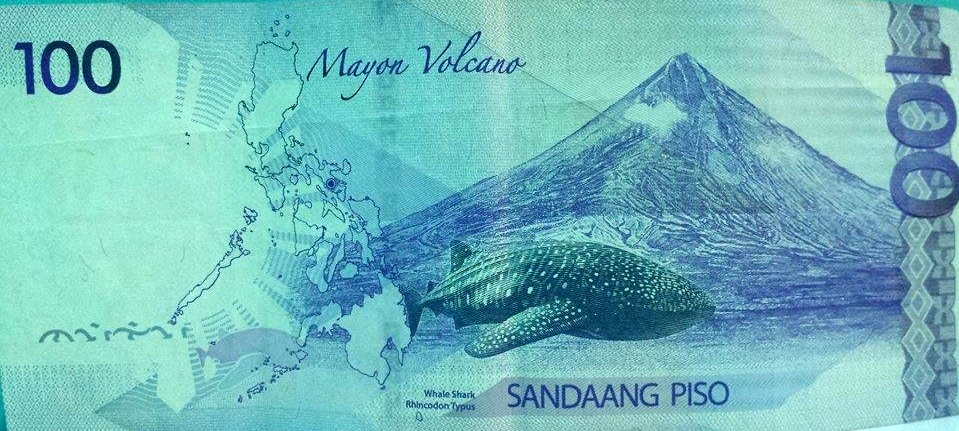 Back of the Philippine's 100 peso bill which shows a whale shark