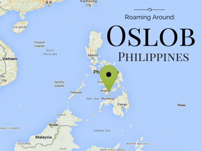 location of Oslob Philippines, where you can swim with whale sharks
