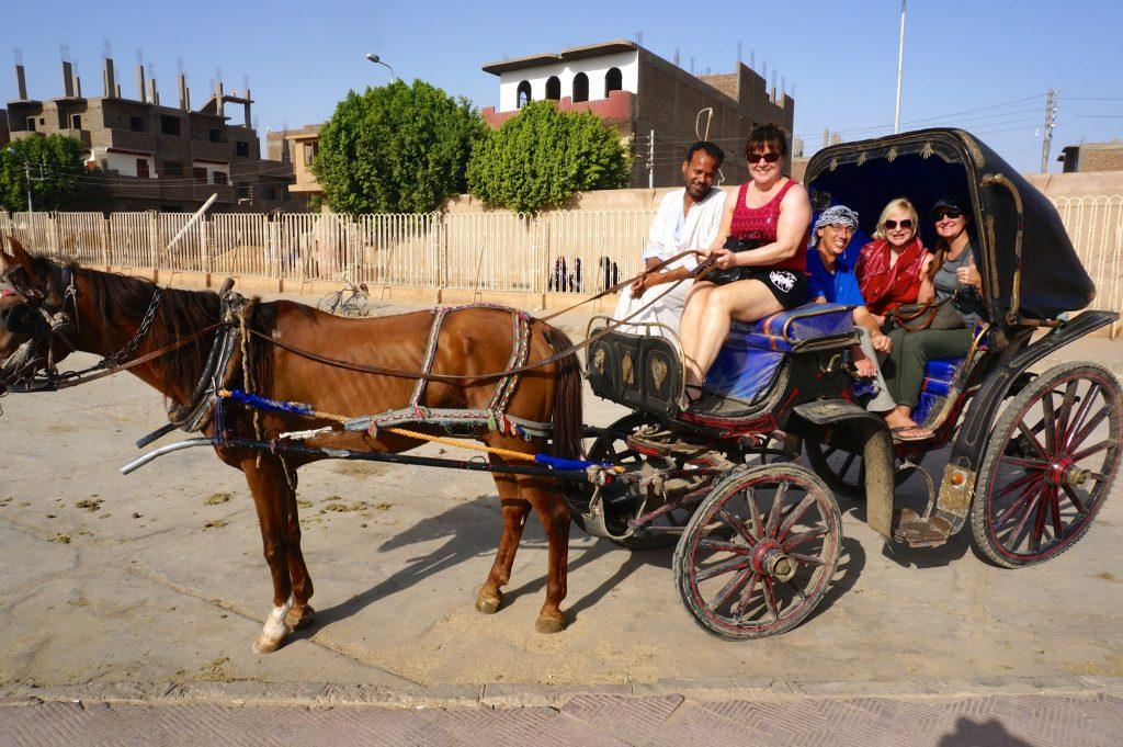 horse & carriage to Edfu temple