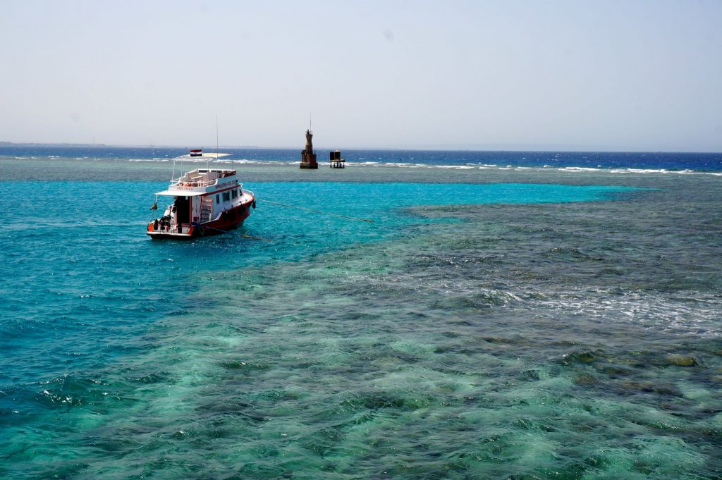 Egypt Red Sea reef snorkeling is one thing to do in Hurghada on a budget