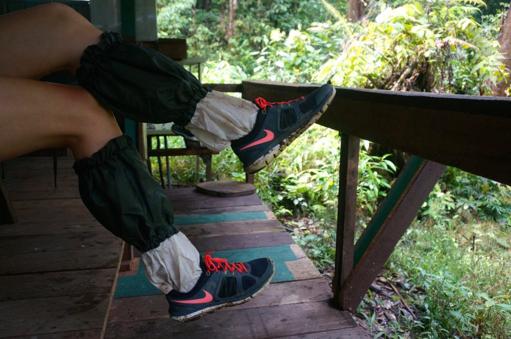 wearing leech socks while trekking through Borneo can help thwart leeches
