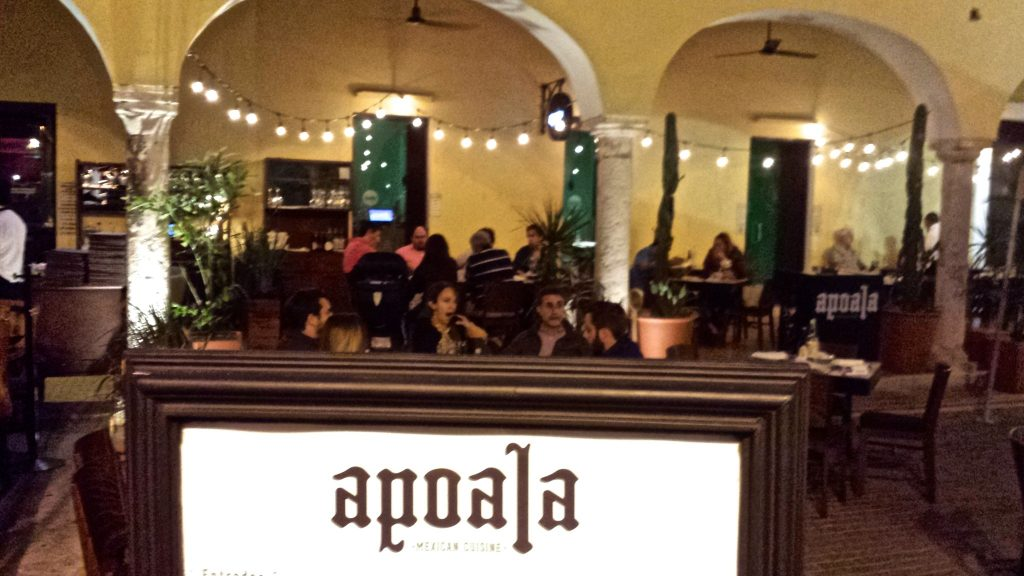 Apoala in Parque Santa Ana is consistently raved about as one of the best restaurants in Merida Mexico