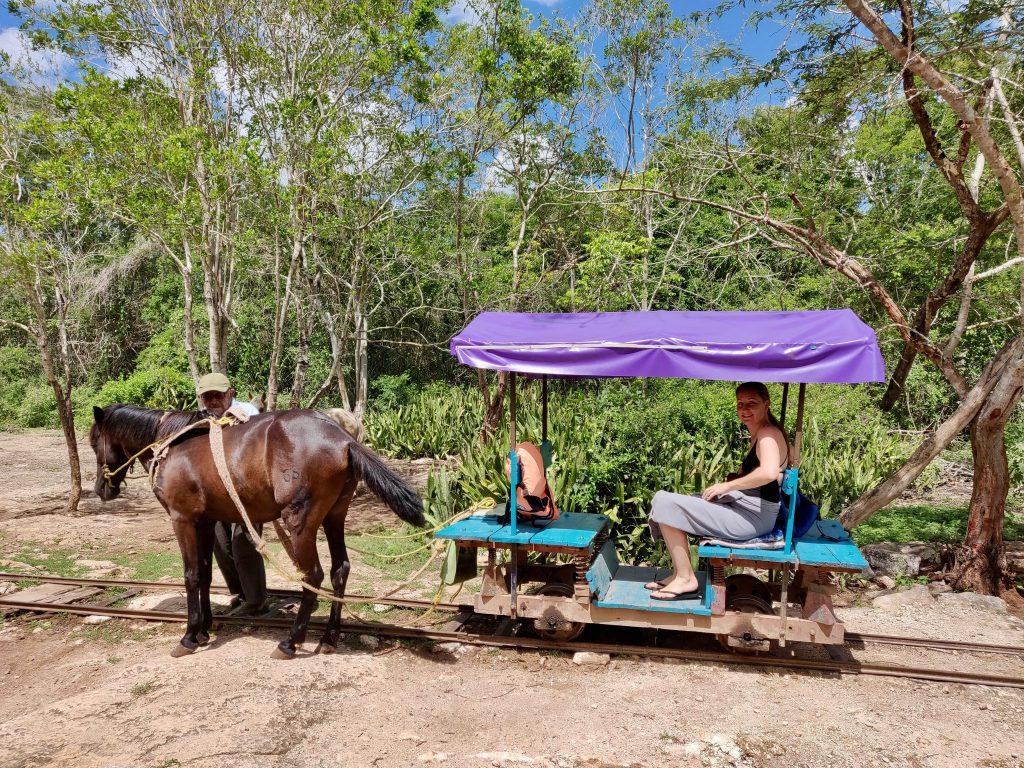 Horse cart to Cuzama cenotes