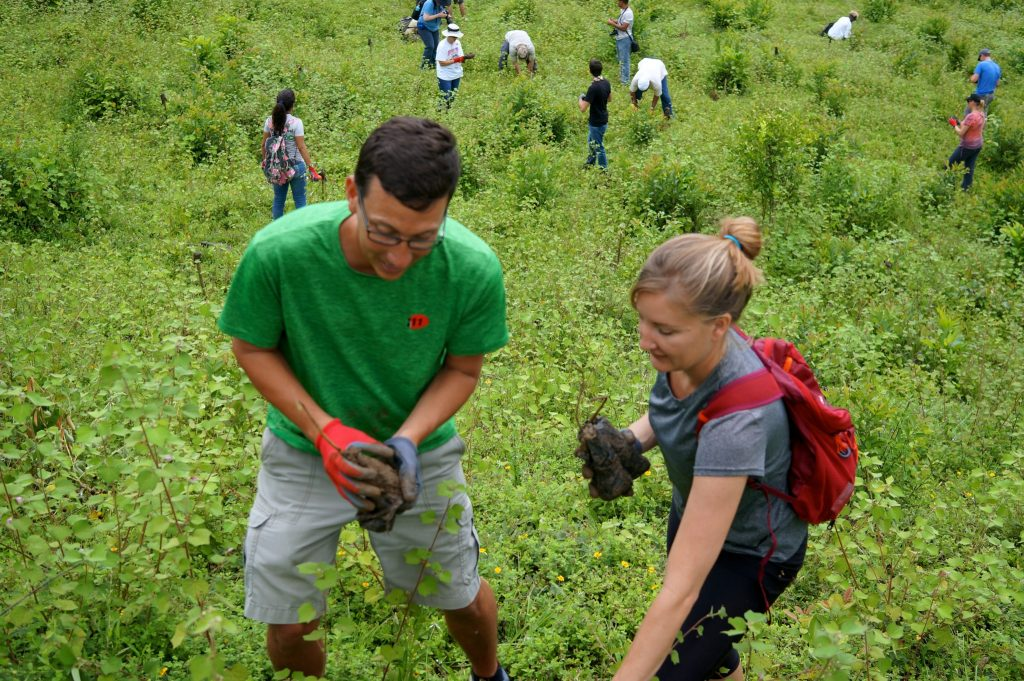Planting tree seedlings as part of Fathom Travel reforestation efforts in Puerto Plata Dominican Republic