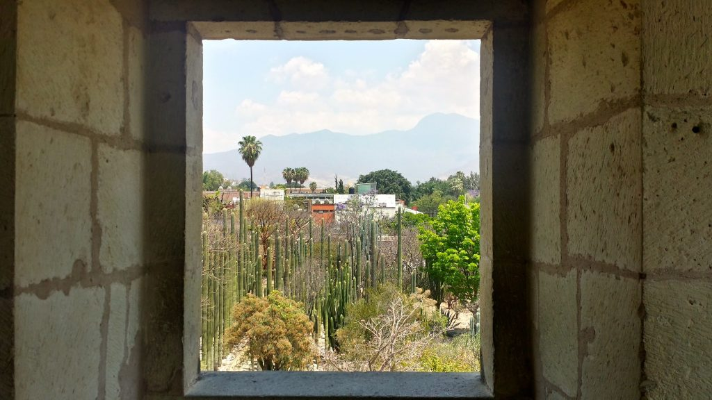 Ethnobotanical Gardens as viewed through a window in Oaxaca Cultural Museum