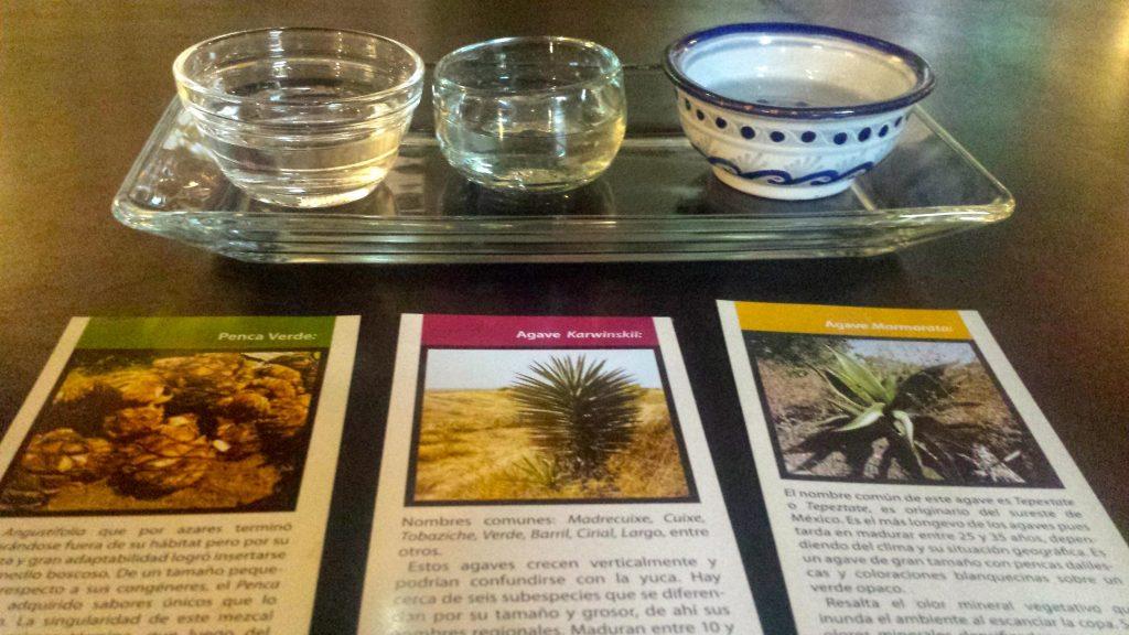 Mezcal tasting in In Situ Oaxaca