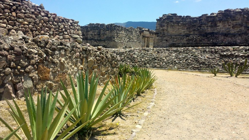 Agave plants line the path into the Mitla ruins which are one the best things to do in Oaxaca