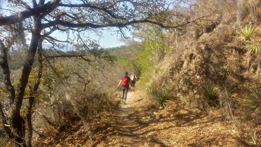 Hiking the Latuvi-Lachatao canyon trail in the Pueblos Mancomunados of the Sierra Madre mountains