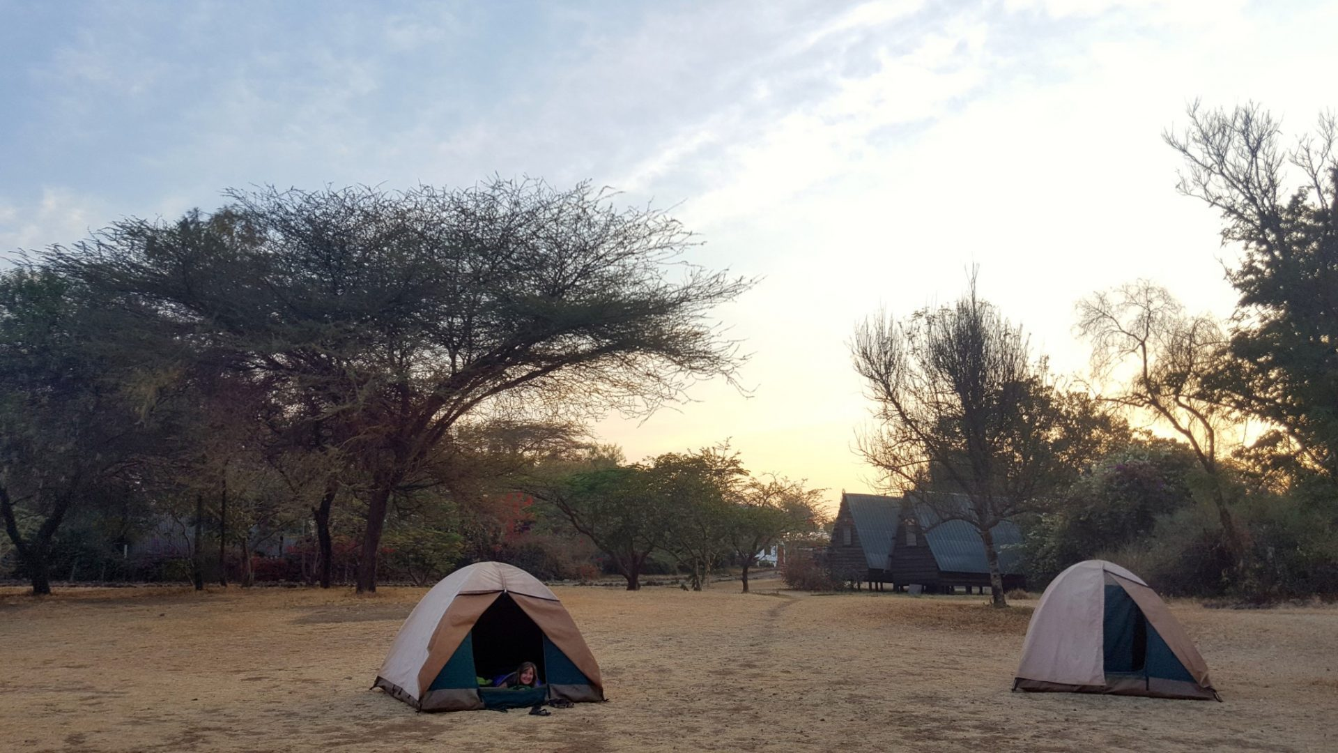 Oasis Overland Africa Review & Best Tips You Need to Know 🐘