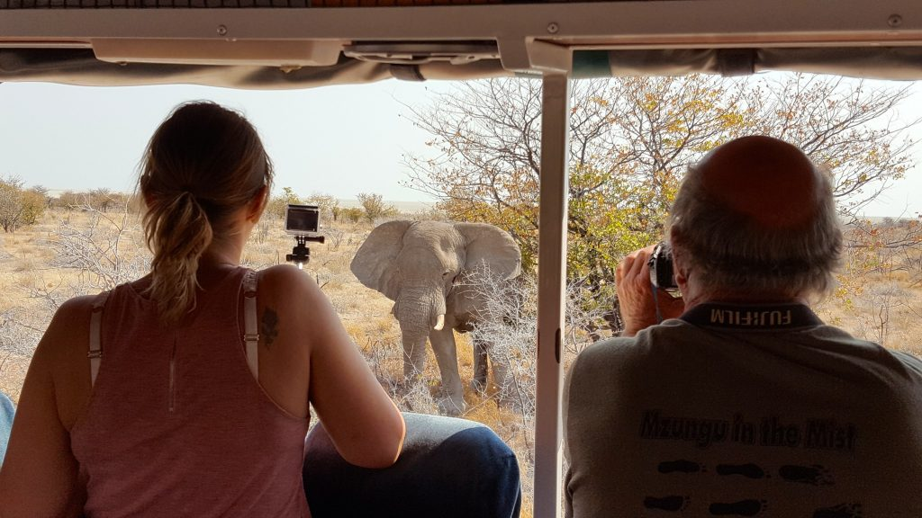 Watching elephants from Oasis Overland truck