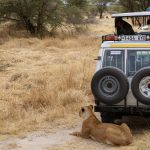 The Best Excursions & Things To Do in Tanzania on an Africa Overland Safari