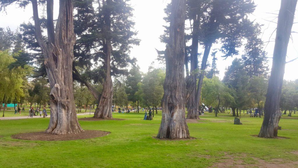 Parque El Ejido Quito Ecuador