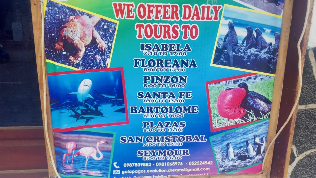 List of Galapagos Day Tours with times: Isabela, florana, pinzon, santa fe, bartolome, pinzon, san cristobal, seymour - we show the prices in this post