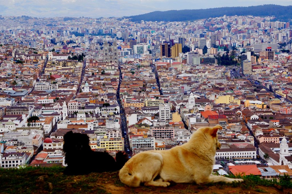 Quito viewpoint