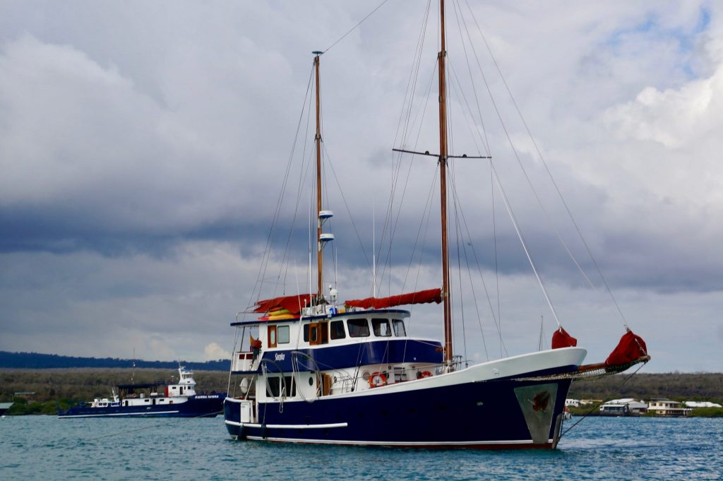 If not full, this sailboat could offer a last minute Galapagos cruise deal