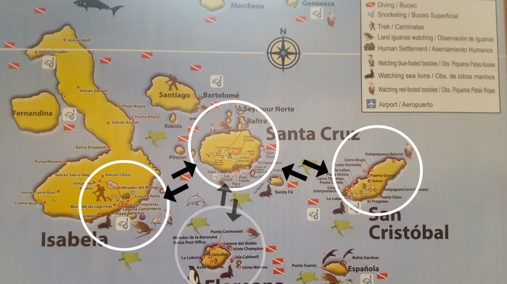 Galapagos islands map showing inhabited islands (Santa Cruz, San Cristobal, Isabela, Floreana) and ferry connections
