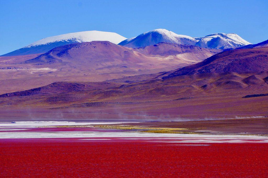 Laguna Colorada is a red lake within Eduardo Avaroa Andean Fauna National Reserve Bolivia