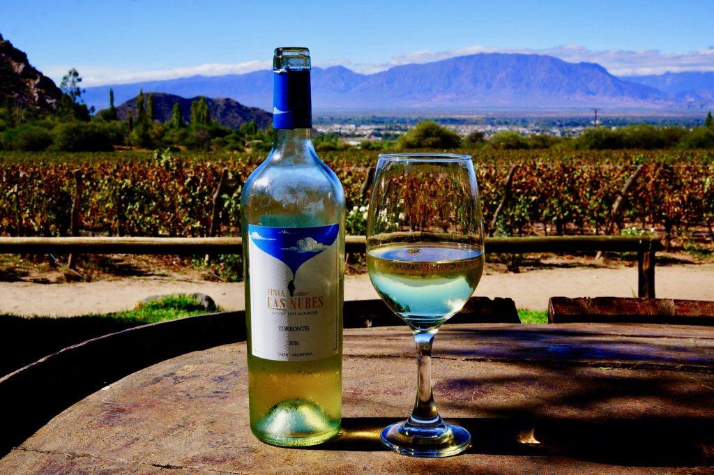 torrontes wine cafayate argentina