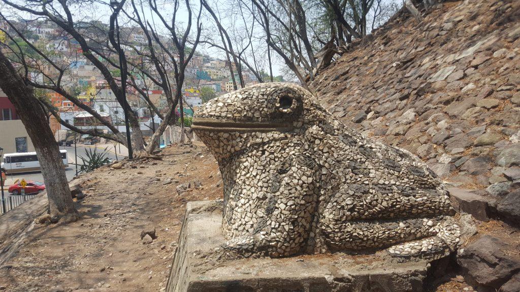 Guanajuato frogs