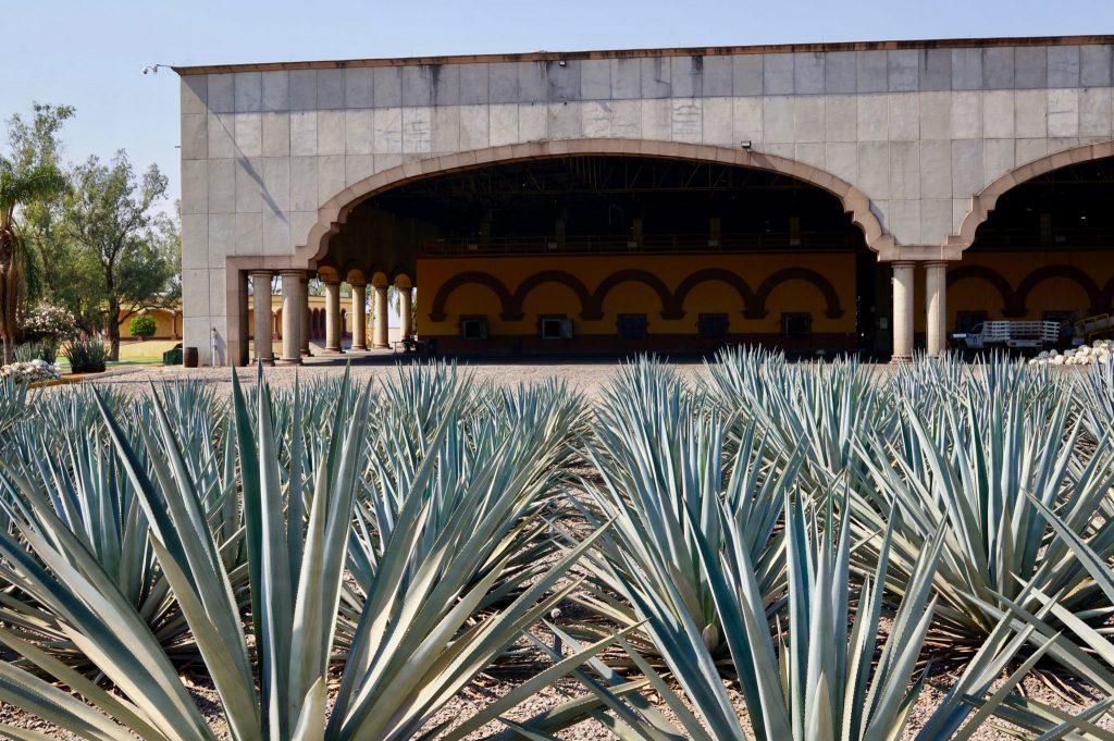 Casa Herradura hacienda