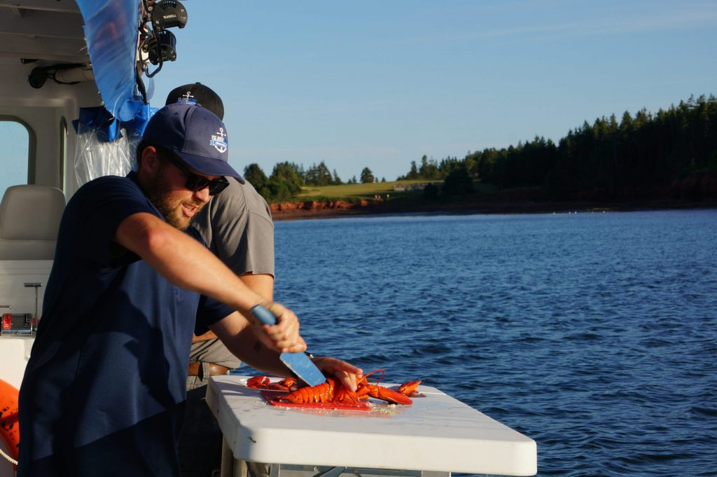 cutting lobster on a boat during PEI's Floating Lobster Boil with Island Boat Adventures