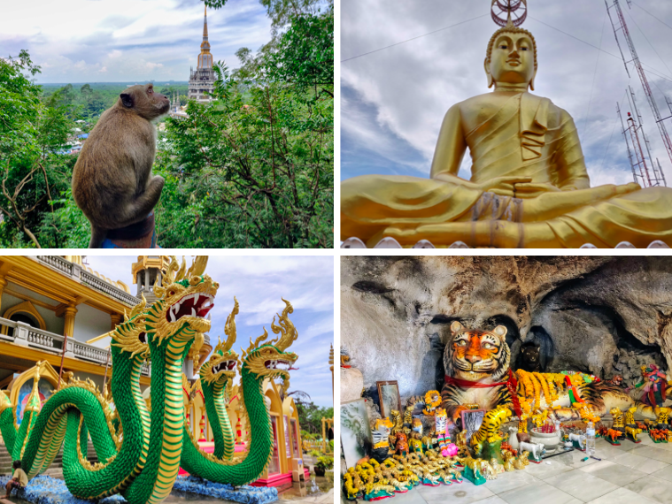 Collage of sights at Tiger Cave Temple: monkey at temple, giant buddha, dragon, and tiger sculpture