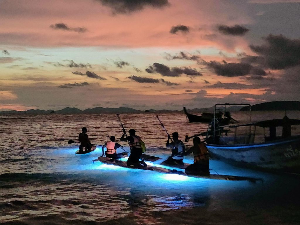 Blue lights glowing from paddle boards as people paddle out on bioLuminescent tour from Railay