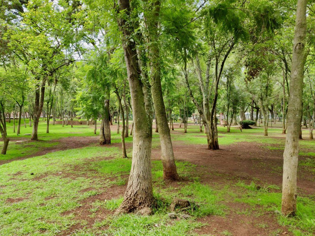 Bosque Cuauhtémoc (Cuauhtémoc Forest) park in Morelia Mexico