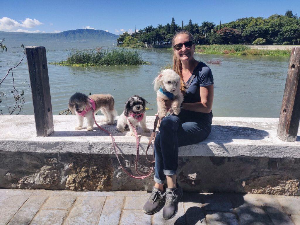 taking three dogs to lake chapala during housesit